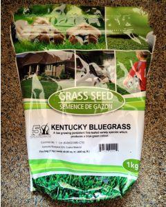 Coated Kentucky Bluegrass 1kg