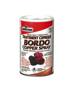 200G Bordo Copper Spray