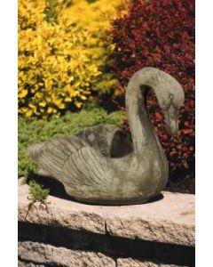 Large Swan
