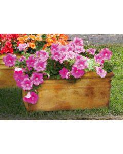 Medium Planter Box