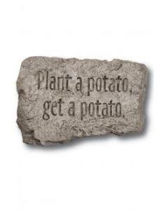 """10"""" Stone-Plant a Potato"""