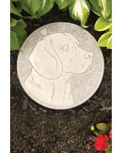 Stepping Stone - Beagle N