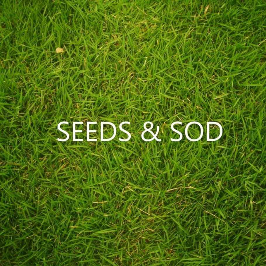 Seeds & Sod