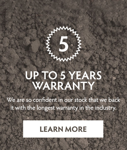 Up to 5 Years Warranty