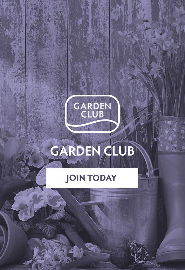 Find out why you should join our Garden Club