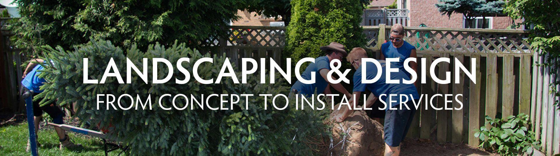 Design Landscaping